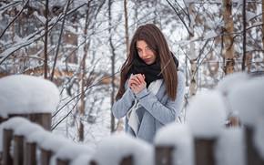 Picture winter, snow, trees, branches, Girl, Ivan Shcheglov