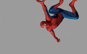 Picture grey background, comics, spider-man