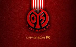 Picture wallpaper, sport, logo, football, Bundesliga, FSV Mainz