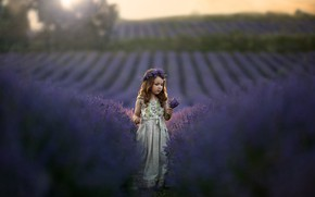 Picture field, nature, dress, girl, wreath, child, a bunch, lavender, Kudrova Tatiana