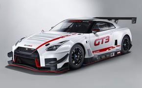 Picture GTR, Nissan, GT-R, racing car, GT3, 2018, Nismo