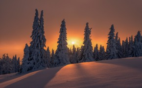 Picture winter, the sun, snow, trees, landscape, sunset, nature, the evening, ate, slope, shadows, Beskydy