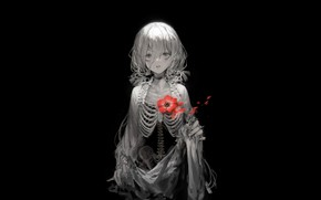 Picture black background, baby, red flower, gray hair, the essence, Sawan, скалет, by Rsef