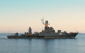 Picture ship, anti-submarine, small, Aleksin