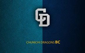 Picture wallpaper, sport, logo, baseball, Chunichi Dragons