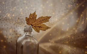 Picture sheet, background, bottle