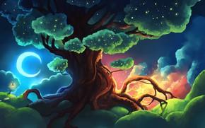 Picture moon, fantasy, night, art, glow, stars, tree, lantern