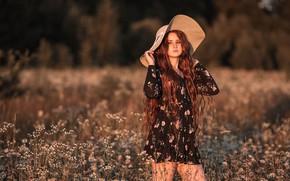 Picture field, summer, girl, sunset, flowers, nature, chamomile, hat, dress, red, grass, curls, Vladimir Vasiliev