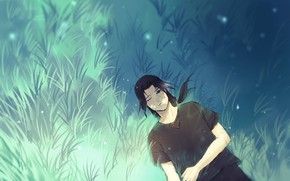 Picture field, grass, Naruto, Art, Uchiha Itachi, by Ns7104