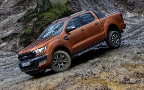 Picture tree, earth, moss, Ford, dirt, pickup, Ranger, Wildtrak