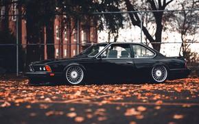 Picture BMW, BMW, 635, CSi, BMW 635 CSi