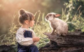 Picture rabbit, girl, Марта Козел