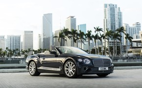 Picture Bentley, Continental, Continental GT, Convertible, V8, 2019