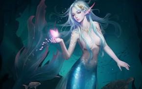Picture Girl, Beautiful, Art, Water, Fiction, Mermaid, Ocean, Sea, Butterfly, Tail, HaRim Shin