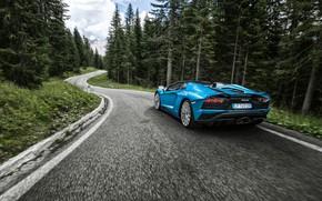 Picture Lamborghini, supercar, rear view, 2017, Aventador S