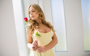 Picture flower, look, girl, pose, room, hair, rose, beauty, Blair Williams