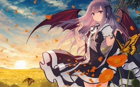 Picture field, the sky, girl, the sun, butterfly, sunrise, Maki, morning, petals, the demon, mill