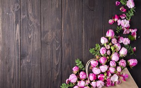 Picture flowers, roses, bouquet, pink, buds, wood, pink, flowers, beautiful, roses