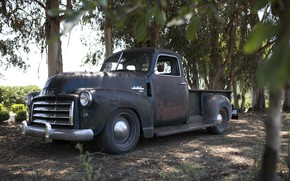 Picture trees, earth, shadow, 150, pickup, 2018, GMC, 1949, ICON, Long Bed Derelict, GMC 150