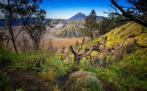 Picture nature, Indonesia, the volcano Bromo