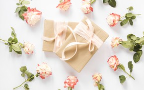 Picture flowers, background, roses, buds, pink, flowers, holidays, gift, roses