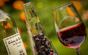 Picture berries, background, wine, glass, bottle, infusion