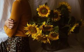 Picture girl, sunflowers, flowers, Irina Joanne