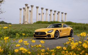 Picture 2020, GT R, AMG, Mercedes-Benz
