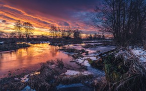 Picture winter, the sky, trees, sunset, nature, river, Tomczak Michael
