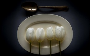 Picture plate, spoon, tulips