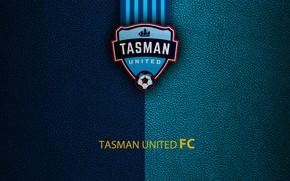 Picture Tasman United, football, sport, wallpaper, logo