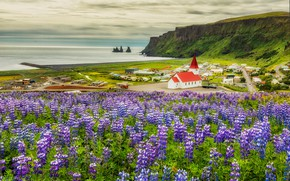 Picture sea, field, summer, clouds, flowers, rocks, shore, meadow, Church, houses, chapel, a lot, settlement, lilac, …
