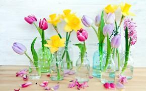 Picture flowers, bottle, vases