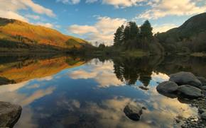 Picture autumn, forest, reflection, shore, pond