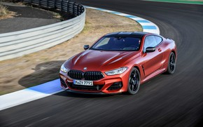 Picture coupe, track, round, BMW, Coupe, 2018, 8-Series, dark orange, M850i xDrive, Eight, G15