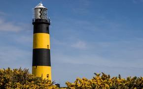 Picture coast, lighthouse, Ireland, Bumble Bee Lighthouse