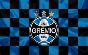 Picture sport, logo, white, black, blue, tricolor, symbol, flag, soccer, Brazil, shield, champion, banner, coat of …