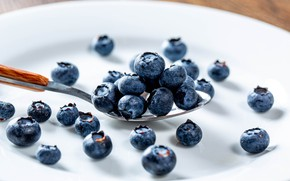 Picture berries, table, blueberries, plate, spoon, placer