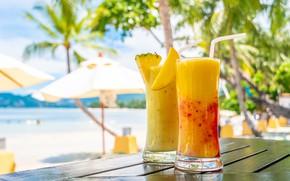 Picture sea, beach, summer, the sun, palm trees, cocktail, summer, mango, pineapple, beach, sea, fruit, drink, …
