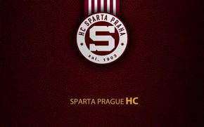 Picture wallpaper, sport, logo, hockey, Sparta Prague