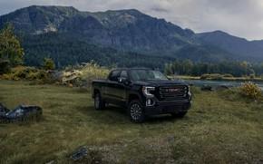 Picture black, meadow, pickup, GMC, Sierra, AT4, 2019