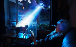 Picture cat, glass, light, night, lights, darkness, table, fiction, room, sofa, blue, woman, UFO, grandma, ray, …