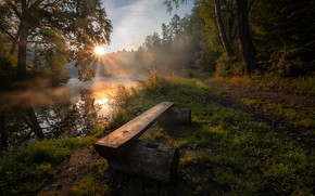 Picture forest, summer, the sun, rays, nature, river, dawn, morning, Russia, Andrei