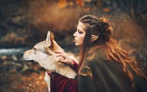 Picture autumn, girl, style, wolf, dog, fantasy, elf, Marketa Novak