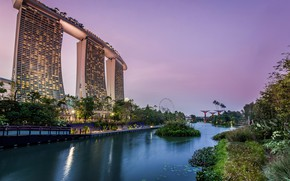 Wallpaper trees, lights, pond, Park, the evening, lights, Singapore, skyscrapers, the bushes, gardens, Gardens by the ...