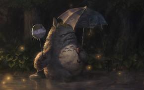 Picture umbrella, grandpa, Totoro, Totoro, dentures, torn umbrella