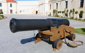 Picture exposure, gun, Константиновская батарея
