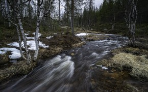 Picture nature, river, Lapland, Spring time