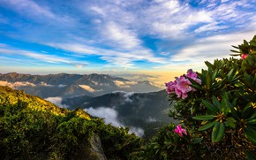 Picture the sky, mountains, panorama, Azalea