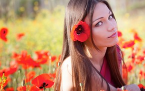 Picture field, grass, look, the sun, flowers, nature, Maki, portrait, makeup, hairstyle, red, brown hair, beauty